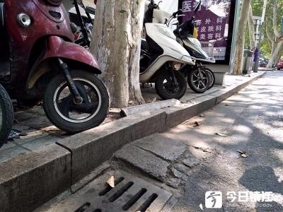 """行道树根系太发达,镇江市区多处路面侧边被拱成""""波形"""""""