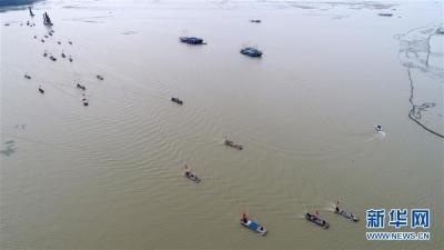 为了加强洪泽湖生态保护,江苏省政府办公厅出台了这个意见...