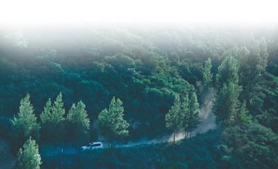 延安退耕还林二十年,生态效益凸显荒山绿 河水清 百姓富