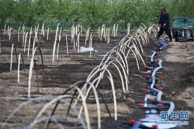 全国年用水总量稳定在6000亿立方米左右