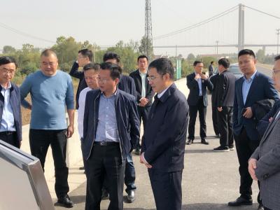 张叶飞调研推进长江两岸造林绿化工作