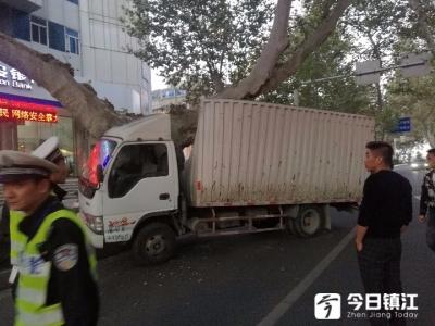 镇江一货车撞上梧桐树 集装箱凹进半米