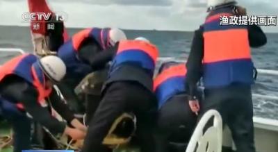 渔船被货轮撞击致12人被困 海上紧急救援
