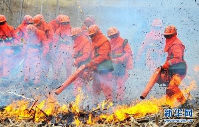 鎮江連續12年未發生較大森林火災