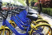 减半投放 报废共享单车何去何从?