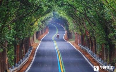 """365公里""""句容福道""""成了秋天一道绝美的风景"""