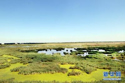 我国将建立并完善自然保护地制度体系