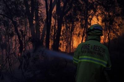 澳大利亚森林大火不止 3死40伤再创新高