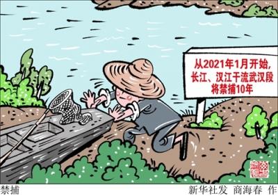 武汉:长江汉江干流武汉段将禁捕10年