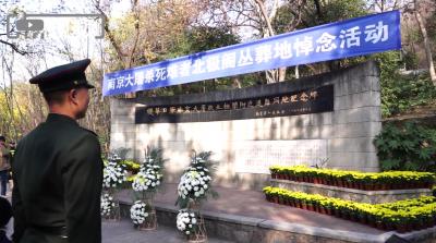 日本70岁老人专程来南京悼念:想要人们尊重历史,希望和平