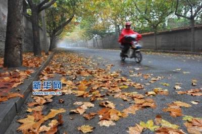 低温报告!未来三天江苏以晴好天气为主 明晨大部分地区有冰冻