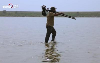 【生态文明@湿地】湿地深处护鸟人