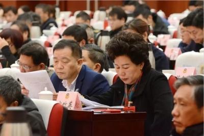 丹阳市政协十五届四次会议隆重开幕