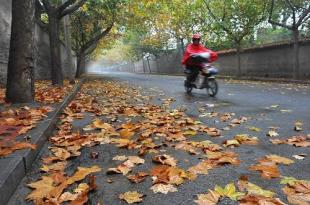今起到后天江苏全省有一次明显降水过程,苏南地区明后两天气温较高