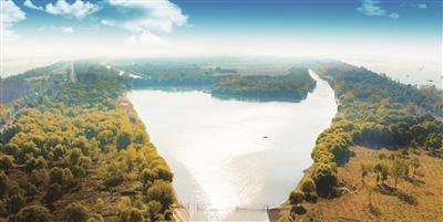 【新时代 新作为 新篇章】湿地保护,江苏展现大手笔