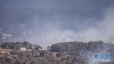 澳大利亚首都附近发生林火
