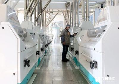 丹阳同乐面粉满负荷生产  每天185吨优质面粉供应南京和上海