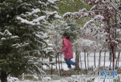 寒潮警报、大风警报!较强冷空气来到江苏