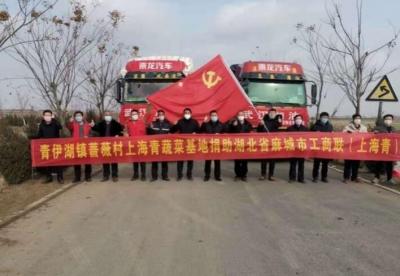 """连续往湖北捐赠6万斤""""上海青"""",宿迁沭阳的蔷薇村""""红了""""!"""