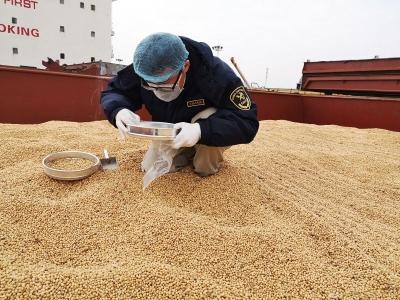 镇江海关全力服务农产品进口  保障国内市场供应