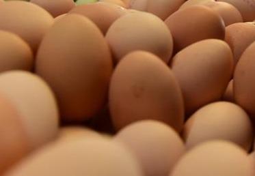 """镇江援鄂医护人员吃到了""""家乡味""""   句容2吨鸡蛋支援黄石战疫一线"""