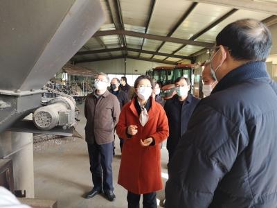 市领导调研粮食烘干设备安全生产