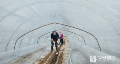 新民洲:疫情防控、春耕备耕两手抓