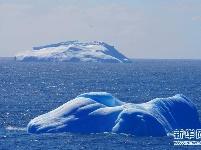 南极威德尔海的冰山与鲸鱼
