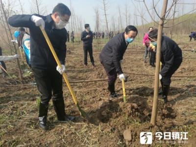 市领导参加义务植树活动  带头为美丽镇江增添新绿