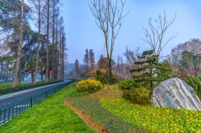 复工加速!江苏9000余个建设工程复工,超100个公园恢复开放