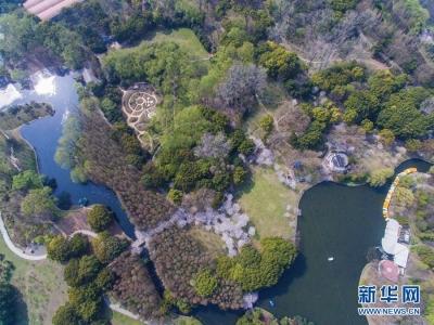 """又到造林绿化黄金时间 来看看江苏哪些地方要""""添绿"""""""