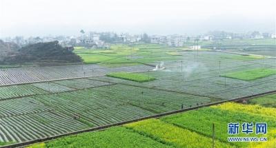江苏出台高标准农田建设承诺制度