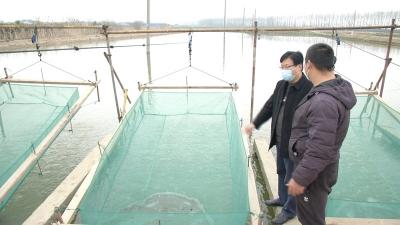 丹阳靠前服务指导水产养殖企业复工复产