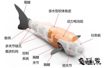 """能在水下跟踪拍摄 南京高校研发鱼形水下机器人""""游进""""国际市场"""
