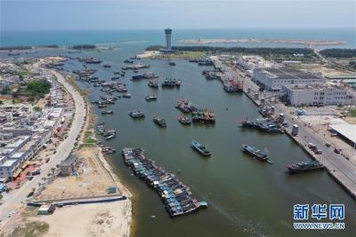 5月1日起海洋伏休!江苏继续实施最严海洋伏季休渔制度