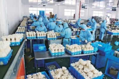 """泰州推进农村产业融合发展 做好产业融合的""""稳定器"""""""