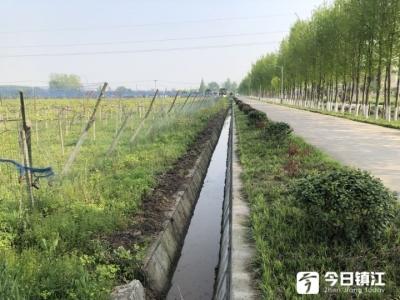 """""""党建+路长制""""将道路环境维护""""分段到人"""""""