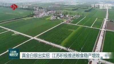 真金白银出实招 江苏积极推进粮食稳产增效