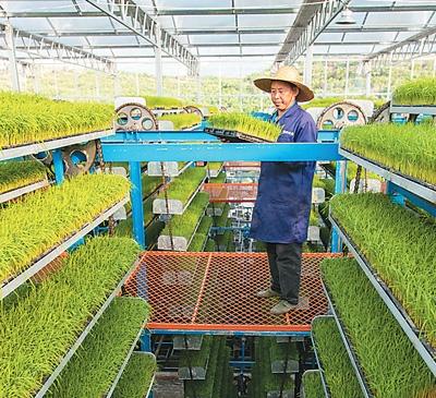 """越来越多""""黑科技""""被用于生产智慧农业显身手"""