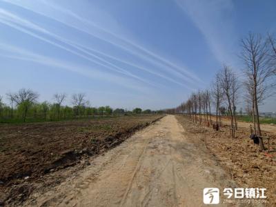 """镇江和平路街道""""党建+""""模式 实现全域新腾飞"""