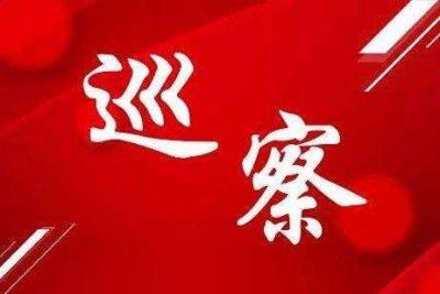 丹阳市委第八轮巡察共发现突出问题238个