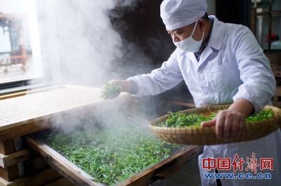 """""""互联网+""""助力湖北春茶""""爱心直供"""""""