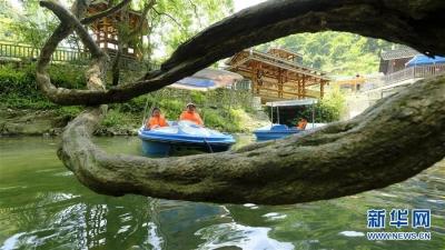 落实限量、预约、错峰开放,五一江苏旅游市场回暖