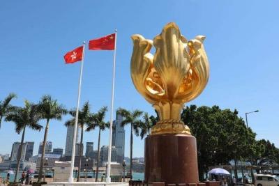 香港特区政府驳斥外国政客对港言论
