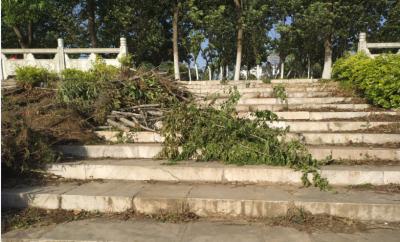 """(先别动)环境遭破坏 设施有损毁  居民盼滨水路风光带重新""""靓起来"""""""