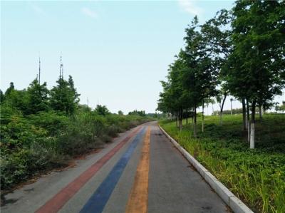 世界自行车日 | 京江绿道有多美,骑行有多惬意?走过一回才知道