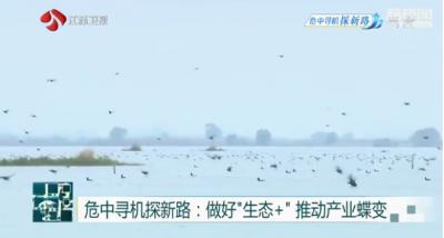 """江苏工业实现率先复苏与绿色节能""""双赢""""发展"""