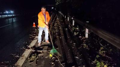 持续降雨导致多处树木倾倒  公路部门连夜抢险保障公路通行安全