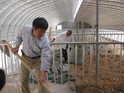 生态畜牧业的开拓者 ——记全市首个正高级乡村振兴技艺师戴网成