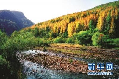 """甘肃庄浪:环境治理换来城乡""""美颜"""""""